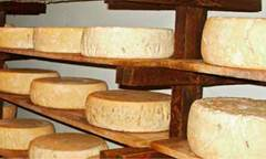 FROMAGE EDITH BURHENNE