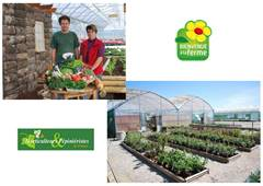 Bialade Horticulture