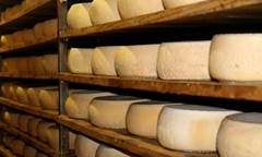 FROMAGERIE FAUP