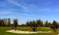 GOLF D'AIGUELEZE